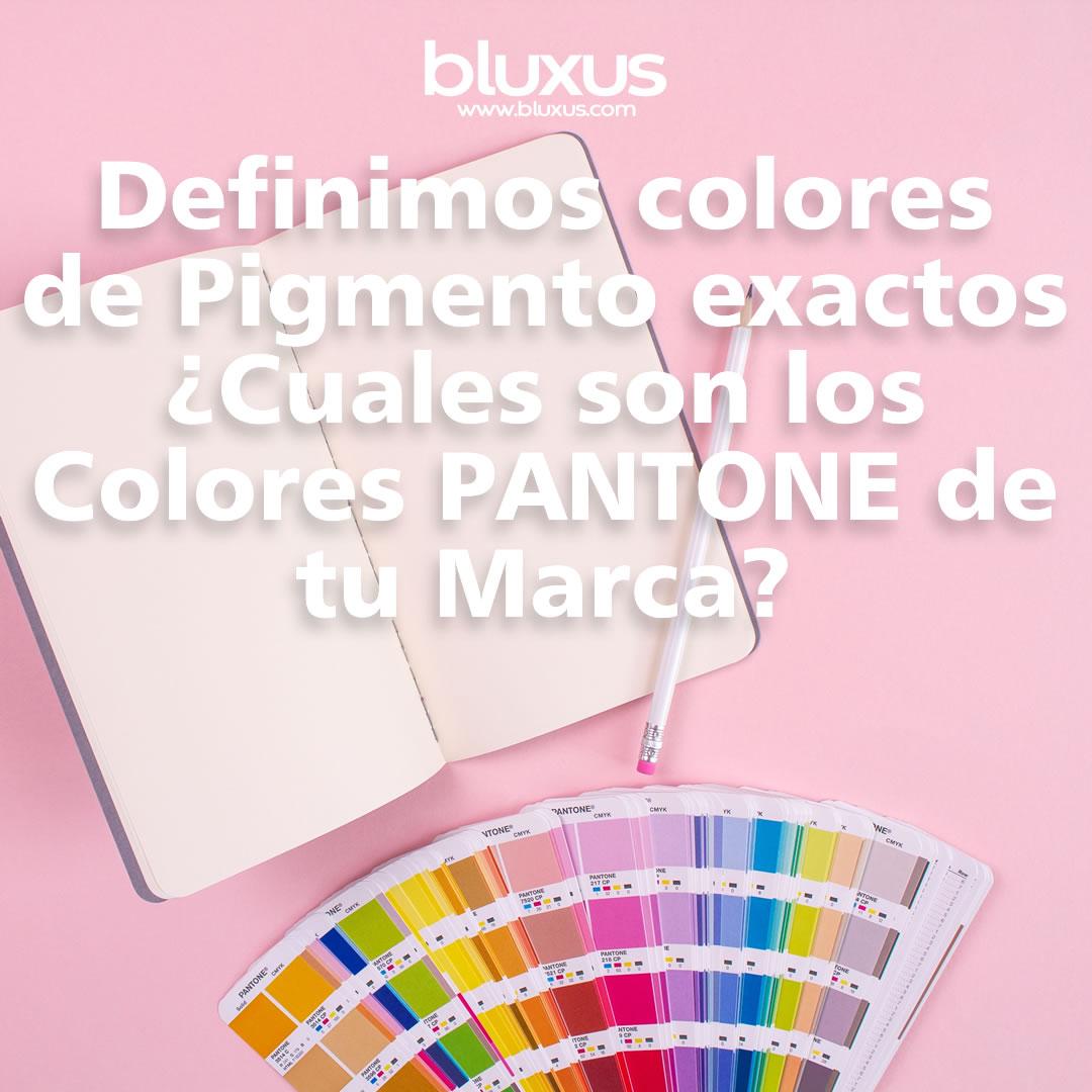 diseño usb usando colores pantone, impresion pvc