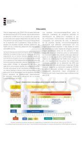 Prueba Rápida de Antígeno [2020] Standard Q Covid-19 AG 5